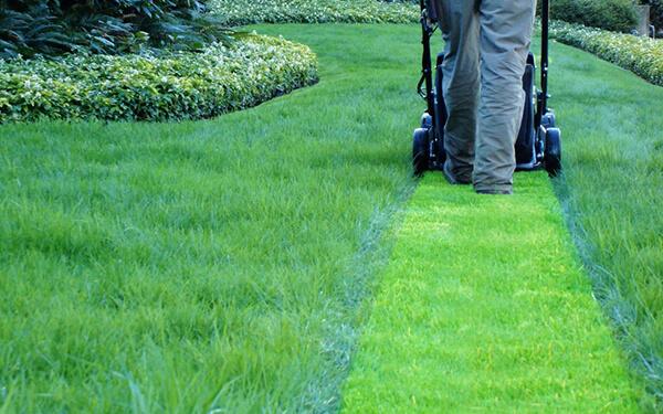 Taglio erba giardino