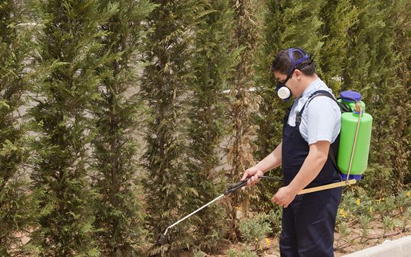 Trattamenti fitosanitari e diserbo